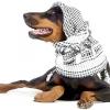 Добермани пінчери. характер, загальний опис собаки, дресирування та утримання.