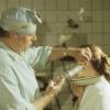 Як чистити вуха кішці - покрокова інструкція