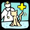Як лікувати кішку від застуди? поради ветеринара