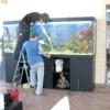 Як правильно доглядати за акваріумом