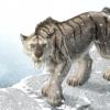 Криптозоологія: мексиканська гривастих кішка