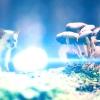 Отруєння у кішок: симптоми та лікування