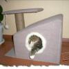 Чому кішки ховаються в будиночках
