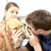 Виділення з очей у собаки