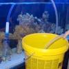 Як злити воду з акваріума