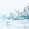 Як пом'якшити воду в акваріумі